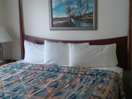 Villa Roma Resort and Conference Center: Hotel room