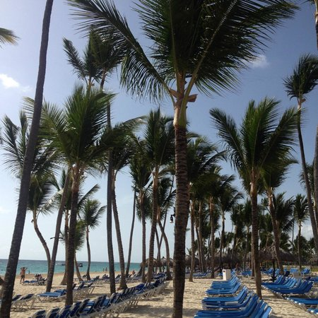 Grand Bahia Principe Turquesa: plage