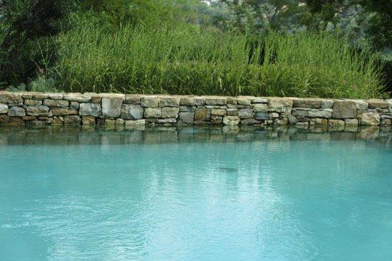 Eden Rock Resort: pool