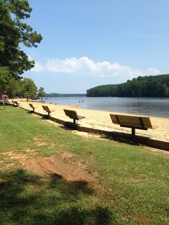 Lake Claiborne State Park: The Local Beach Scene