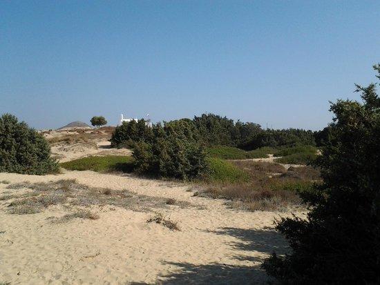 بلازا بيتش هوتل: spiaggia