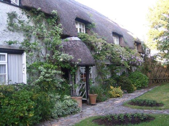 Yew Tree Farm: Daphne's Lovely Farmhouse Home