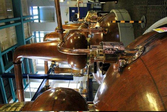 Deanston Distillery & Visitor Centre: Tour of distillery.
