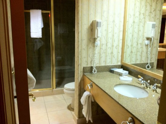 Carriage Ridge Resort: shower area with it's own sink - one bedroom side