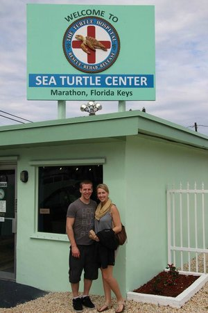 The Turtle Hospital : We Loved it!