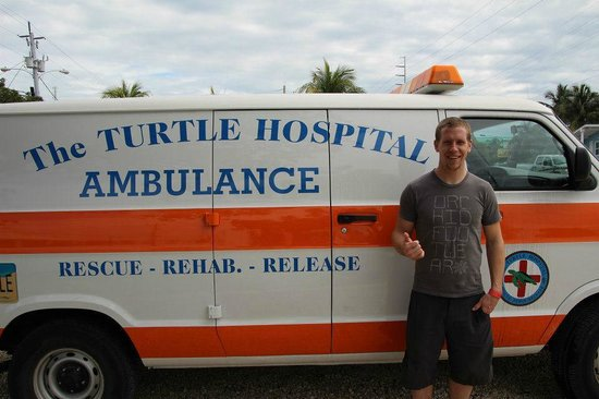 The Turtle Hospital : Turtle ambulance!