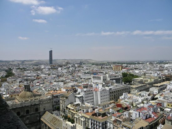 Catedral de Sevilla: View at the city from the tower top