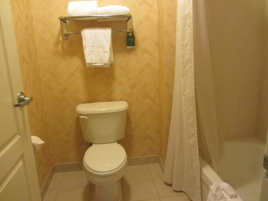 Homewood Suites by Hilton Fort Collins: bathroom