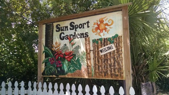 Sunsport gardens nudist club