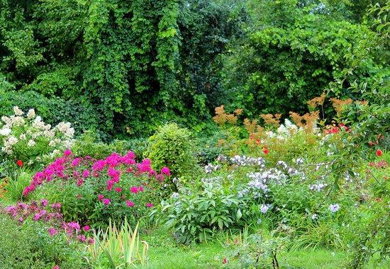MGU Botanic Garden