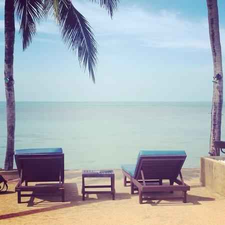 Blu' Beach Bungalows: Sunloungers overlooking the beach.