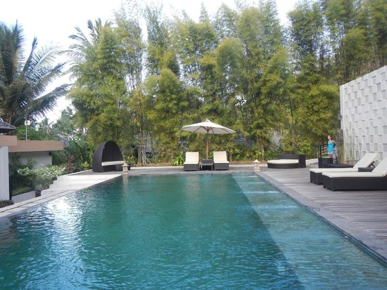 Kebun Villas & Resort : The pool