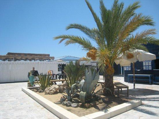 The Grand Hotel Hurghada : Здесь собирают группы для дайвинга