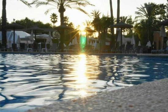Protur Safari Park Aparthotel : Pool