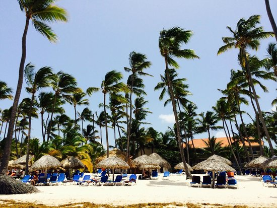 Dreams Palm Beach Punta Cana: beach area