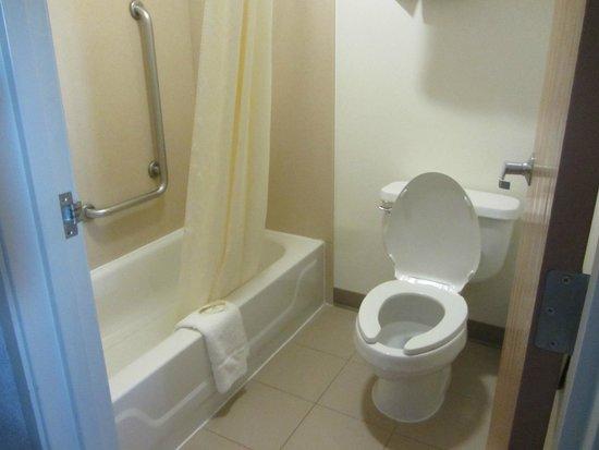 Quality Inn & Suites Denver Airport Gateway Park: tub/shower
