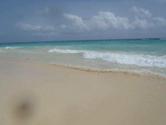 Hard Rock Hotel & Casino Punta Cana: gorgeous