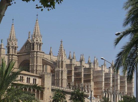 Catedral de Mallorca: Cathédrale de Palma majestueuse