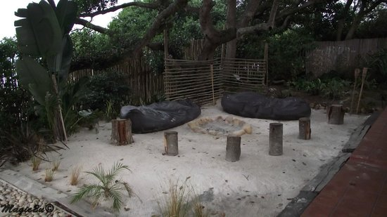 Backpackers Beach House Lodge: Communal Braai area