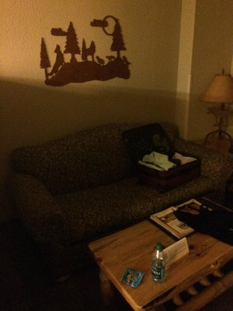 Great Wolf Lodge Grapevine : Pull Out Couch