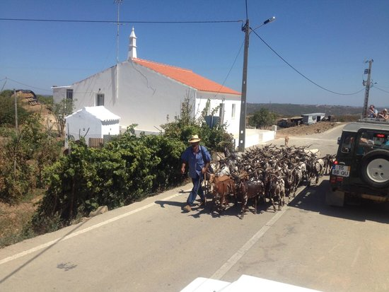 Riosultravel Tours: agricultura local