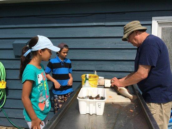 Old Miller Trout Farm: John cleans the trout