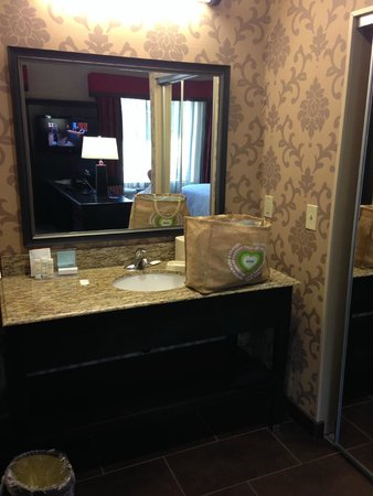 Hampton Inn and Suites Hope: Vanity