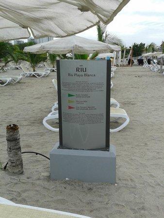 Hotel Riu Playa Blanca: Área de Playa