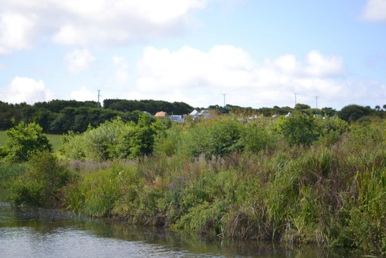 Cerenety Eco Camping: campsite from the canal walk into Bude