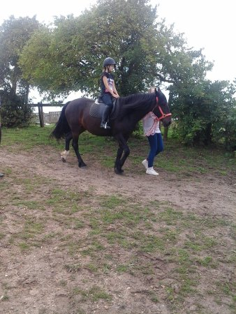 Allhallows Holiday Park - Haven: horsing around