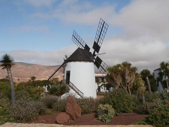 SBH Jandía Resort : moulin