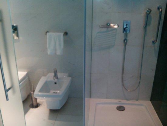 Sheraton Porto Hotel & Spa: WC - Ducha