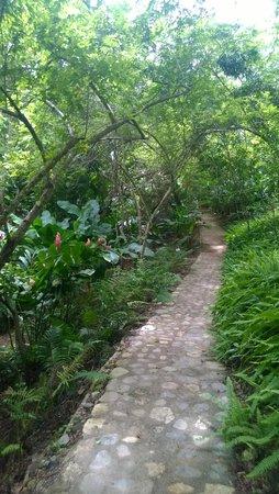 Hagia Sofia: senderos