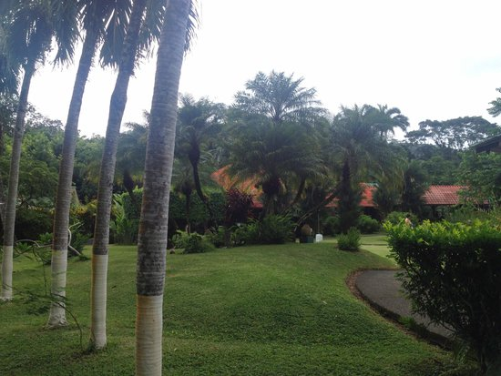 Villas Rio Mar: Jardines