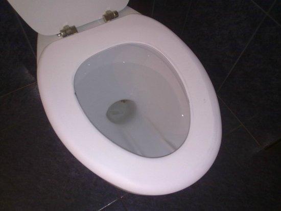 Gran Regente Hotel: WC, indescriptible, lo nunca visto