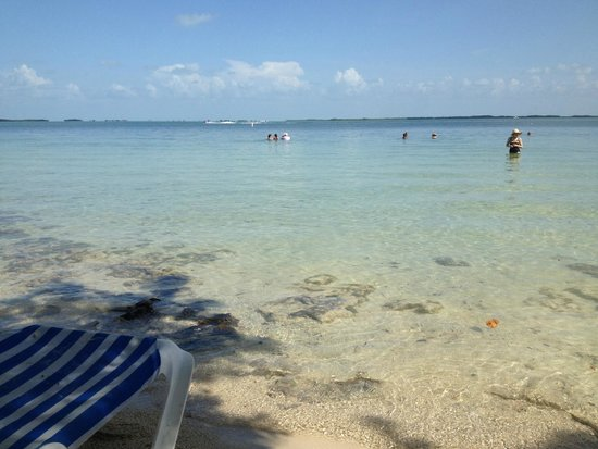 Hilton Key Largo Resort : Calm, Clear Water