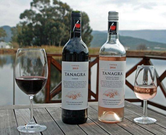 Tanagra Wine + Guestfarm: Farm Dam