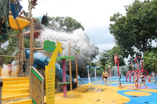 parc aquatique zoo