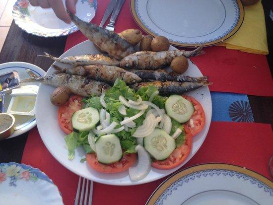 Hervorragende Portugiesische Kuche Vagabundo Do Mar Lagos