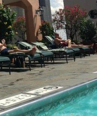 Hotel Monteleone : Rooftop Pool