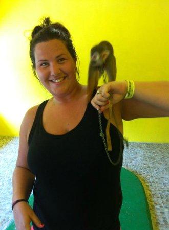 Vallarta Zoo: Chance to hold monkeys
