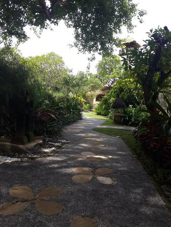 Novotel Bali Benoa : small path that would lead you to pool and beach. we even saw a squirrel on one of the tree:)