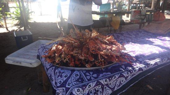 Hakuna Majiwe Beach Lodge: Aragoste e cicale