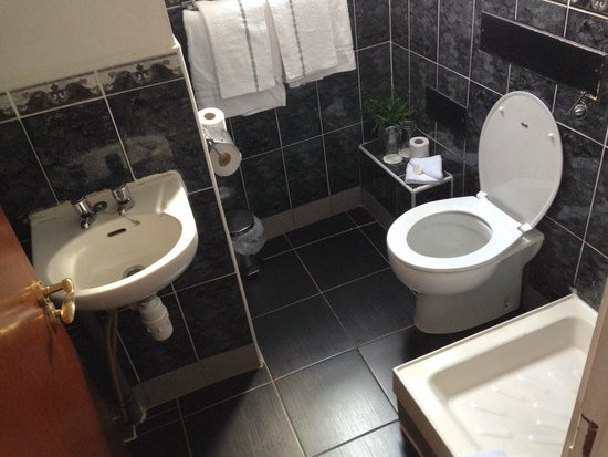 Dublin Citi Hotel: bagno