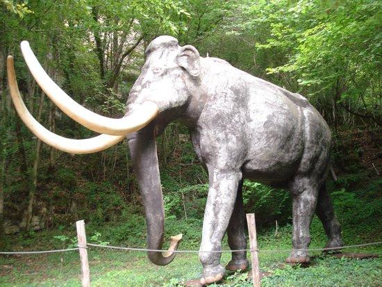 Roc de Cazelle : animal représenté sur le parcours