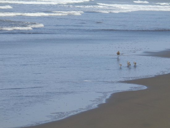 Hotel Playa Bejuco: Playa tranquila