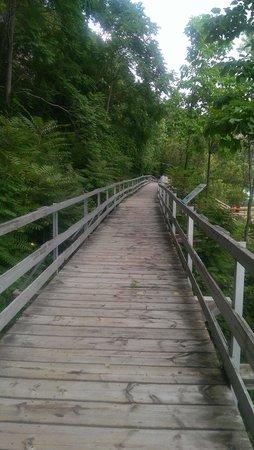 White Water Walk : the walkway