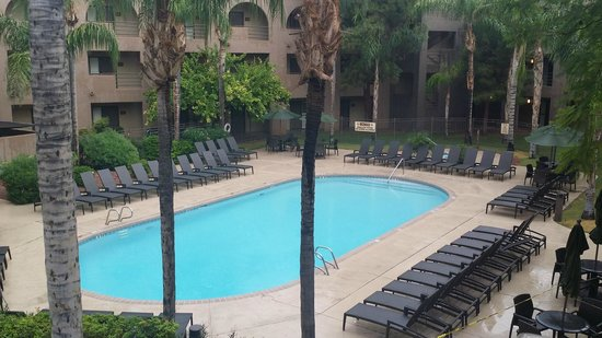 Embassy Suites by Hilton Hotel Phoenix - Tempe: Pool