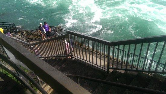 White Water Walk : obervatory deck