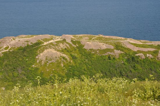 Signal Hill: looking out over the hill